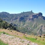 "Pohled na Roque Nublo (ten ""malý kamínek"" nahoře)"
